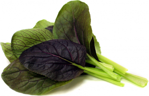 Pak Choi roede
