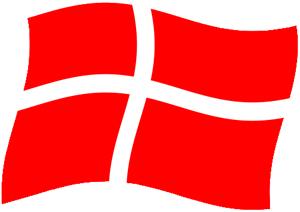 Flag DK uge 21