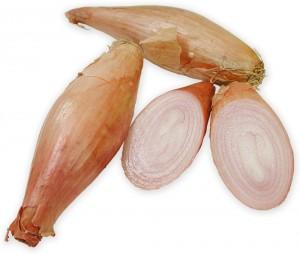banan skalotteloeg