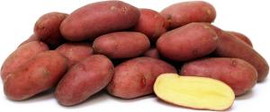 Roseval kartofler 2