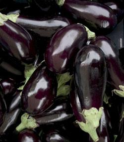 auberginer 1